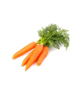 Cenoura Orgânica com rama Maço