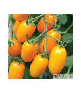 tomatinho amarelo Grape...