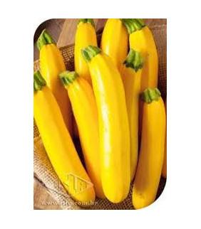 Abobrinha Italiana Amarela...