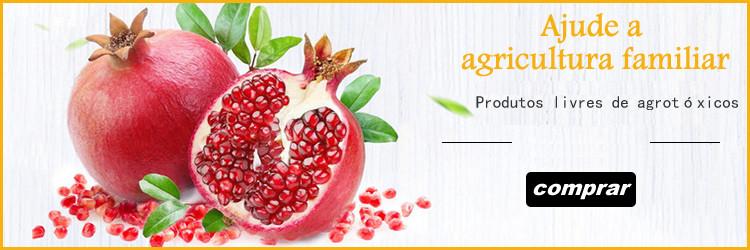 Produtos Orgânicos que ajudam a agricultura familiar